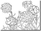 母の日・カーネーション・メッセージ 塗り絵用白黒イラスト素材