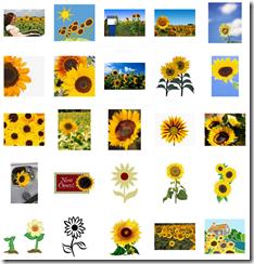夏の花イラスト素材まとめ6