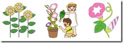 夏の花イラスト素材まとめ
